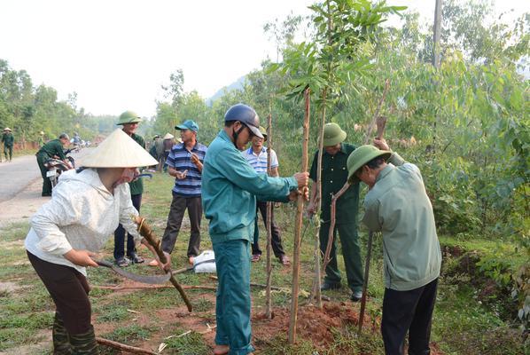 Hội Cựu Chiến binh xã Kỳ Xuân ra quân chăm sóc cây xanh dọc các trục đường giao thông nông thôn.